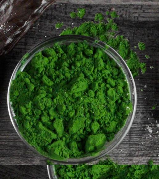 belcando-mastercraft-zutaten-Chlorella-Algen