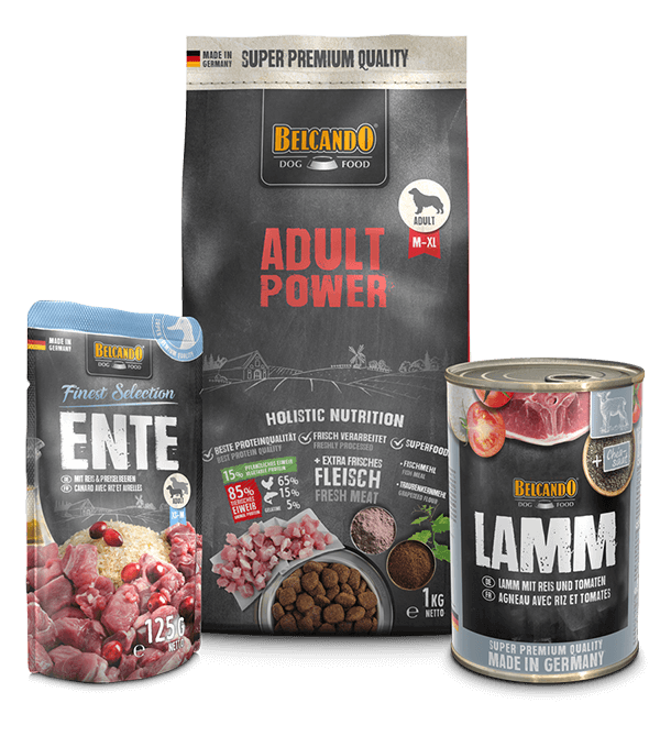 Belcando-Kennlernpaket-Adult-Power
