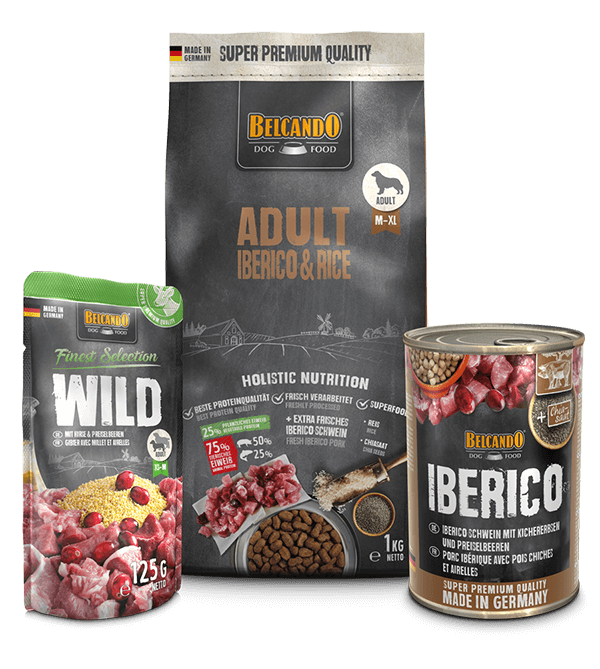 Dog Box BELCANDO® Adult Iberico & Rice