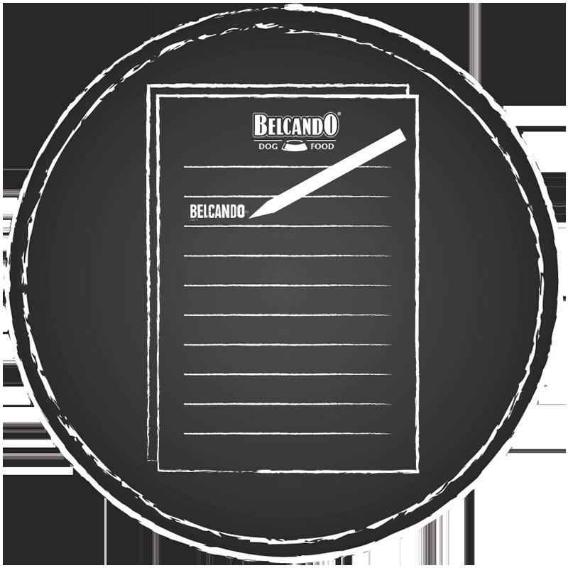 Belcando_Garantie_Icon01