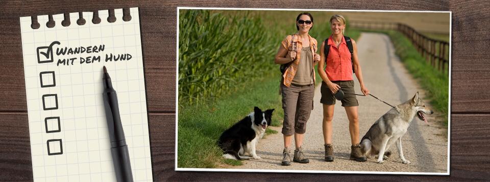 wandern-mit-dem-hund-checkliste