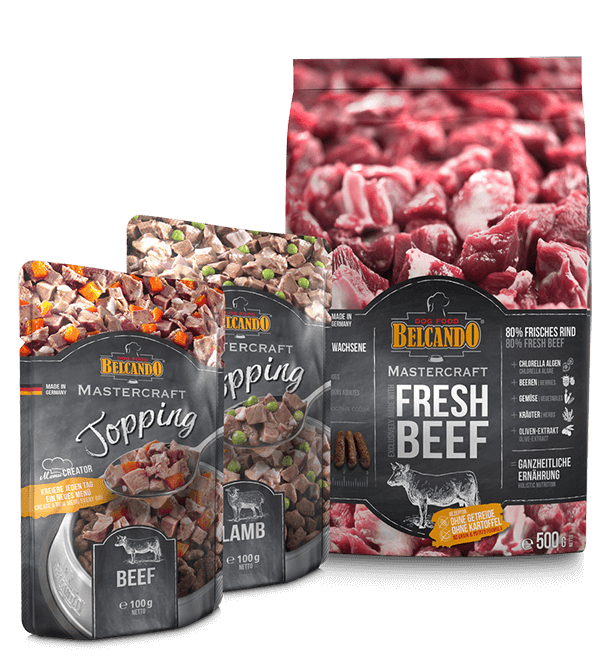 BELCANDO® MASTERCRAFT Dog Box FRESH BEEF