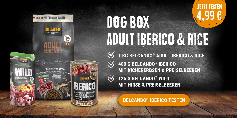 dog-box-iberico-banner